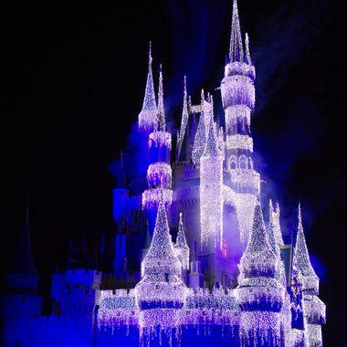 Disney2016_Castle-46