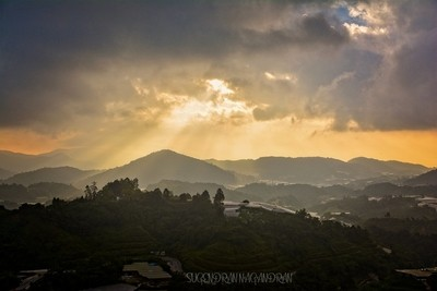 Sunrise view in Cameron Highland