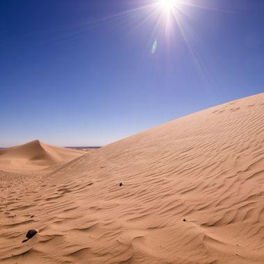 Dunes at the North Algodones Dunes
