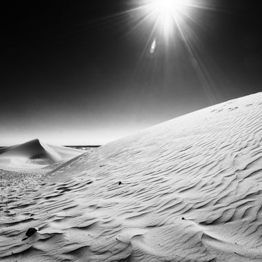 North Algodones Dunes in CA