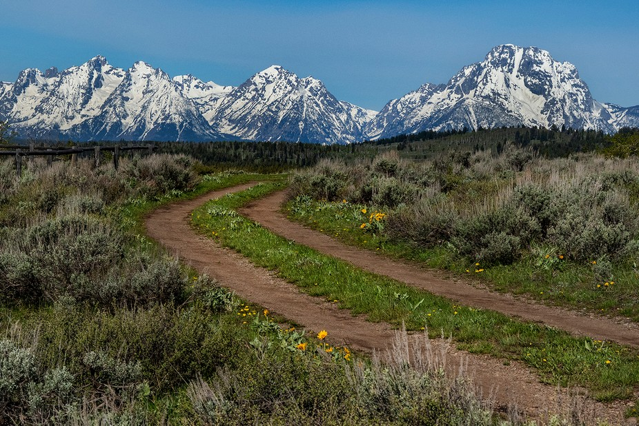 Heading out looking for a better view of the Tetons...