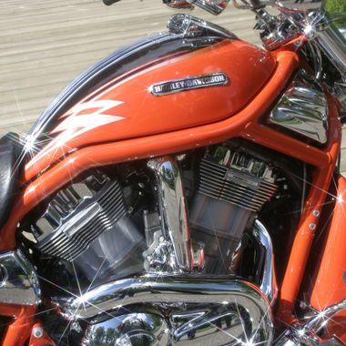 Harley-Pats- (5)