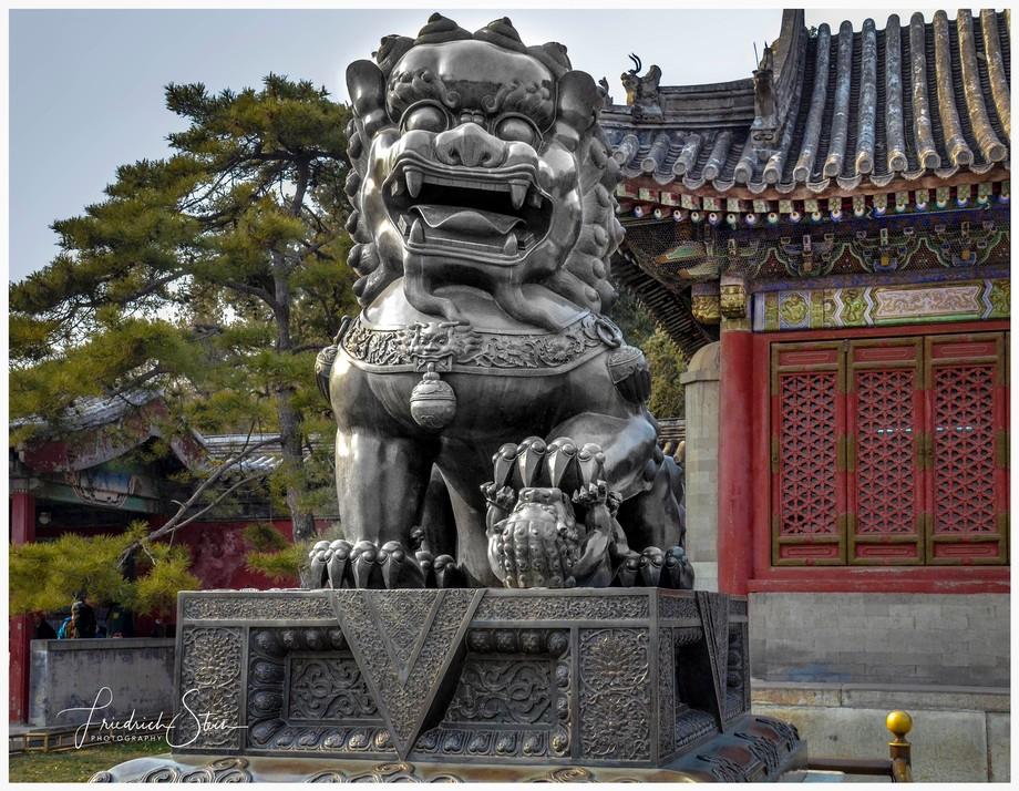 Female Temple Dog at The Summer Palace (Chinese: 頤和園; pinyin: Yíhéyuán)