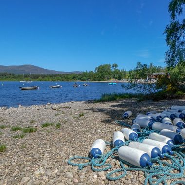 On the shore of Loch Insch