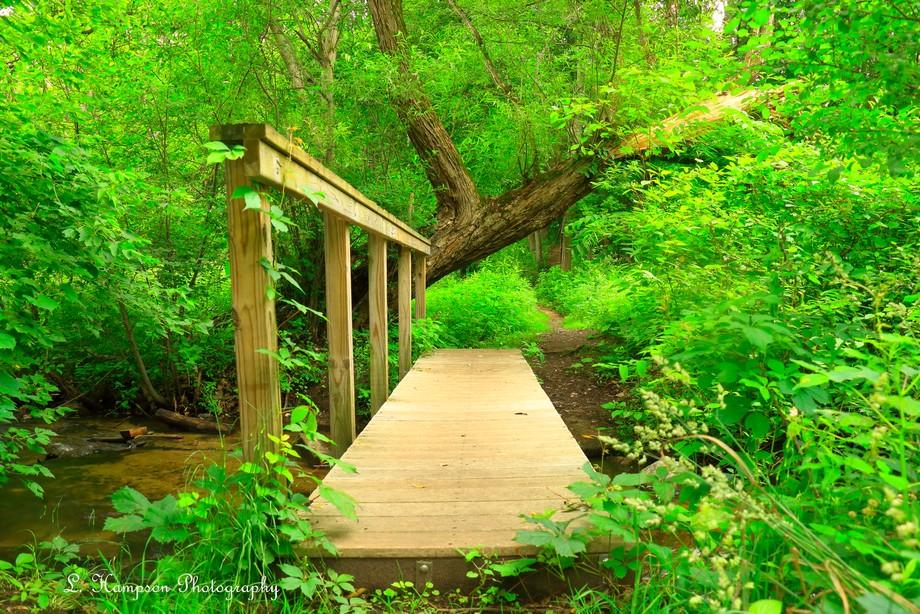 Plank bridge for a stream crossing in a nature preserve in Kalamazoo Michigan