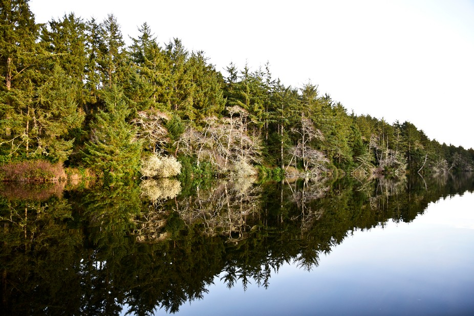 This is a lake at the Oregon Coast, called Coffenbury Lake.