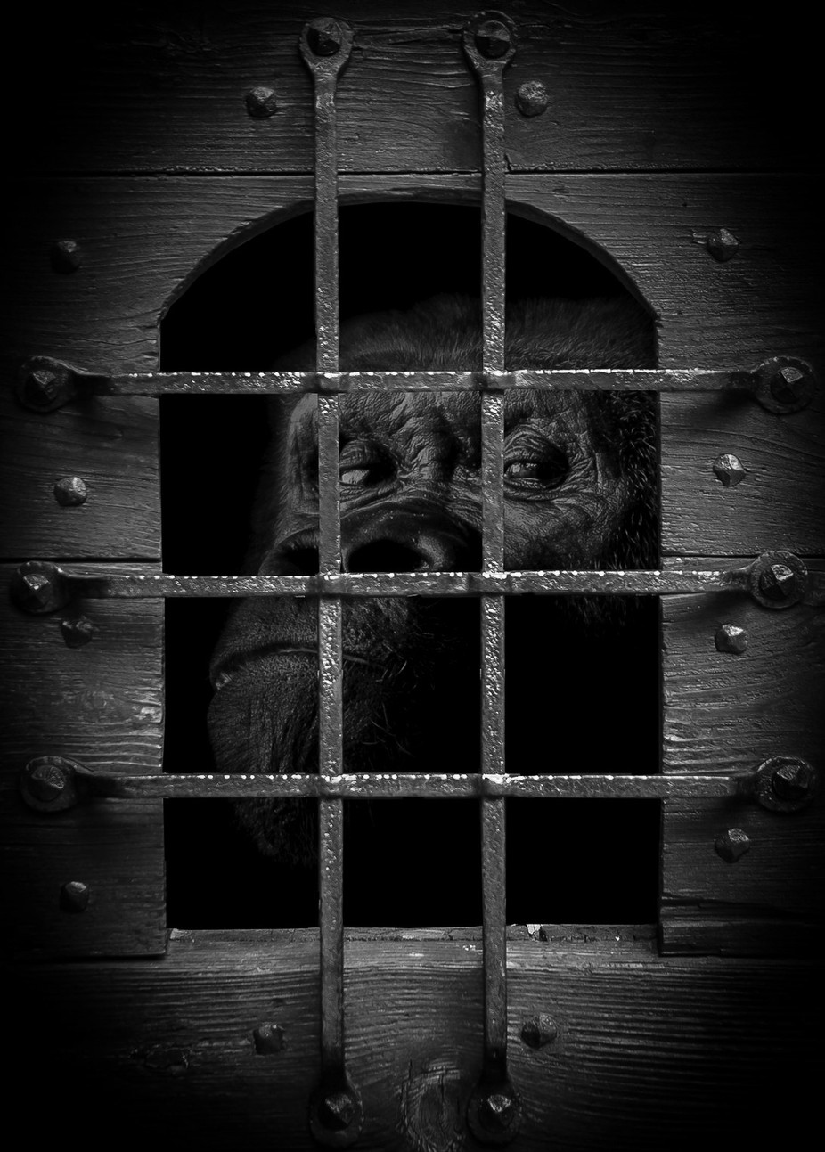 Do not open that door by NickSW - Everything In Black And White Photo Contest