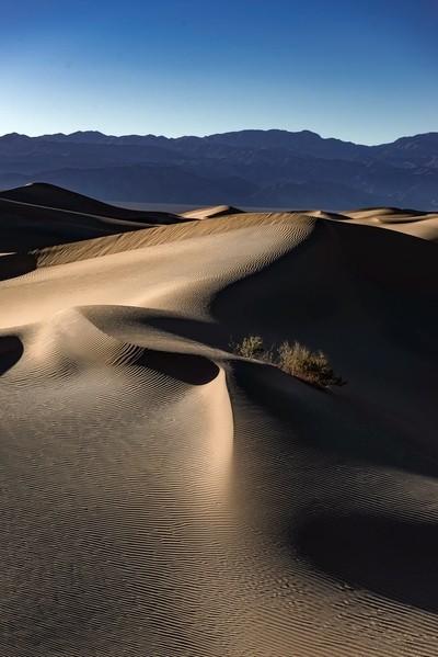Evening in Death Valley.