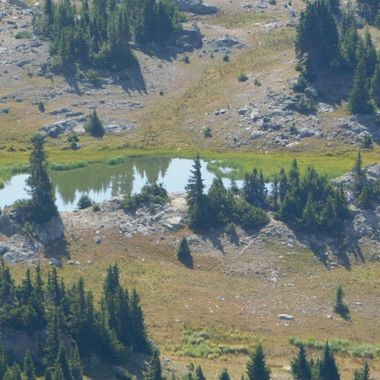 Glacier Pond reflections