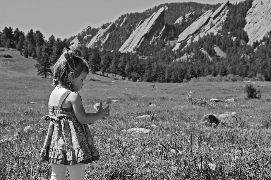 My daughter was fascinated with dandelion seeds and we happened to be in the perfect location for...