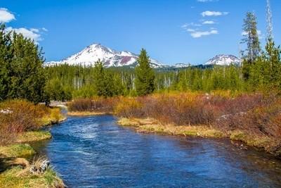 Stream in the High Cascades