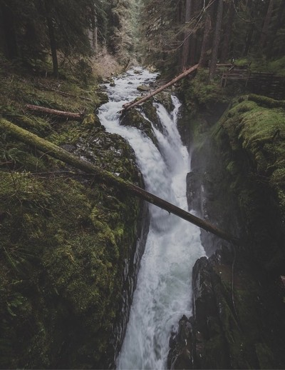 One of Olympic National Parks best waterfalls !