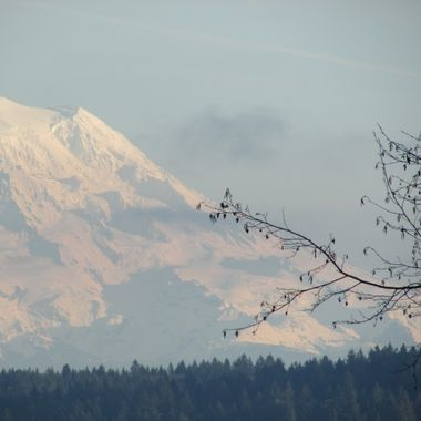 My family and I are blessed with the view of this beauty from our homes on Harstine Island in Mason County, Washington. This is just a unplanned, random click I captured on my point & shoot- but I believe it's worthy of an upload!