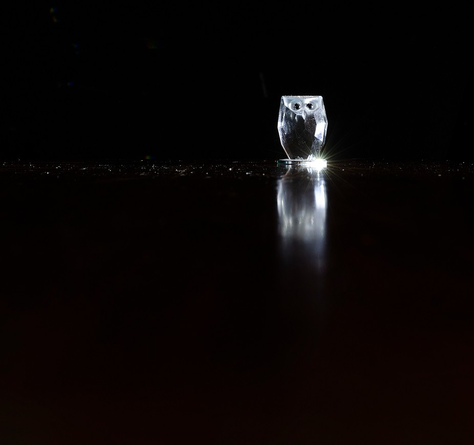 Attempting to use negative space in this image. I used a crystal Owl, placed it on the dining tab...