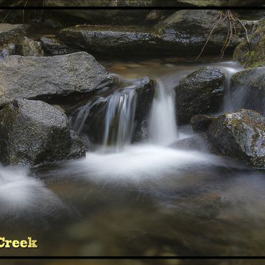 Stagg Tree Creek