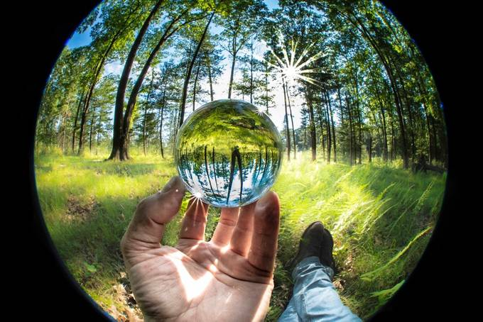 New Perspectives-1759 by Daniel-French - Composing With Circles Photo Contest