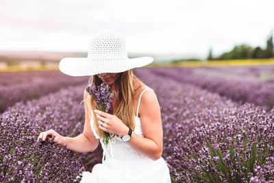 My lovely Wife at lavender field