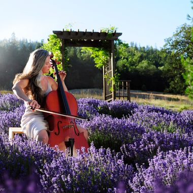 Treasa Playing the Cello in the Lavender Garden