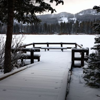 After a visit to my cardiologist, I was feeling a bit somber.  I sought to capture something that would match my mood.  I found it at Silver Lake, by the Brighton Ski Resort up Little Cottonwood Canyon near Salt Lake City, Utah.  The day was overcast.  The snow was freshly fallen.  The woods were quiet.