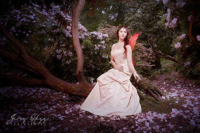 Beauty resting in the grove... by ghphotouk - Creative Reality Photo Contest