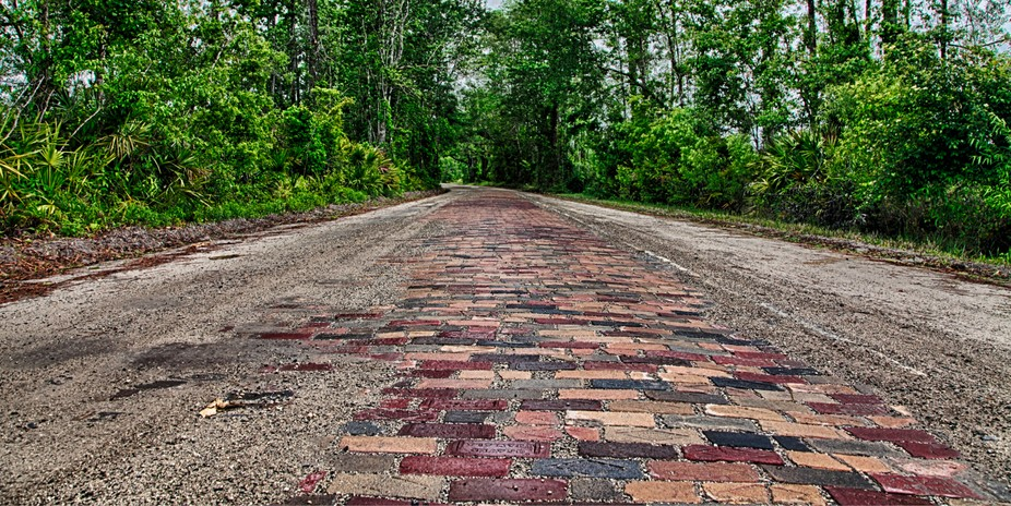 The Dixie Highway in Bunnell, Fl. Also known as Old Brick Road, it was the main and sometimes onl...