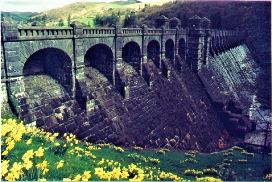 This dam holds back an enormous lake that is a water reservoir.  I was impressed by the jonquils that bloomed there in April.  Original photo was a film photo.