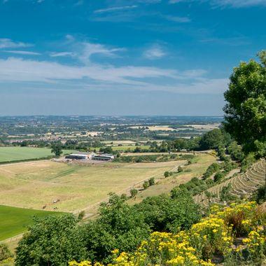 View over Westbury.