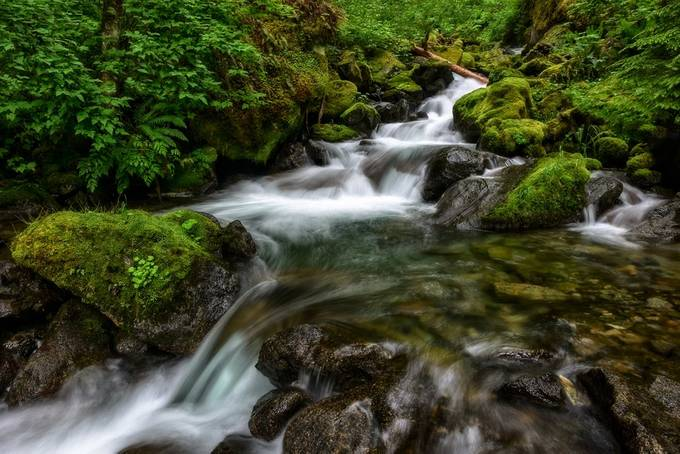 The Crossing by smunited - Streams In Nature Photo Contest