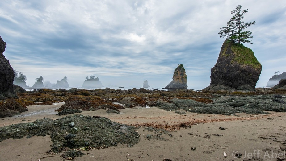 For the 4th of July we went backpacking to Shi Shi Beach and the Point of Arches, on the Washingt...