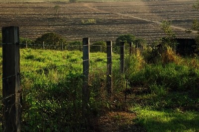 The fence, the pasture, the land ready for planting