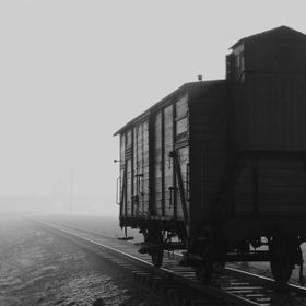 Emerging through the fog an eerie site, one of the few remaining cattle cars used to transport the victims of the Holocaust to their end at Birke...