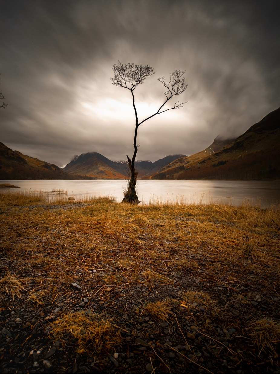 Buttermere Lone Tree Is A Beauty by gtaylor_photography - The Natural Planet Photo Contest