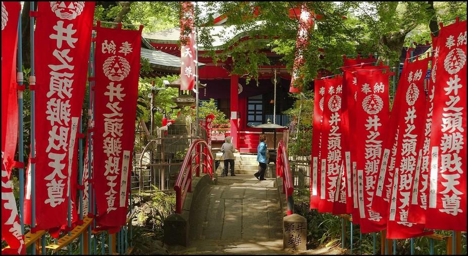 Inokashira Kichijouji park in the west of Tokyo.