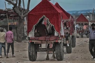 Village Cart Ride
