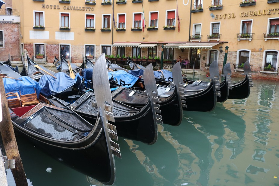 Early morning in Venice before the boatmen uncover their boats.