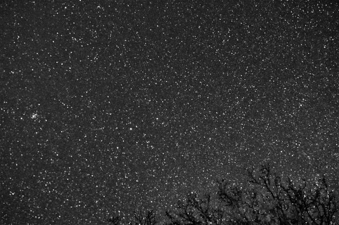 Trying out a new lens on the stars.  I like that they are crisp all the way to the edge. There is a meteor trail.  Castor and Pollux are the two bright stars in the middle of the photo, Pollux being on the right.   M1 is in the lower right hand corner.