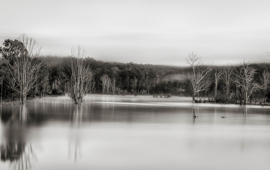 This is Wyaralong Dam. This dam is well photographed because of all the dead tress.
