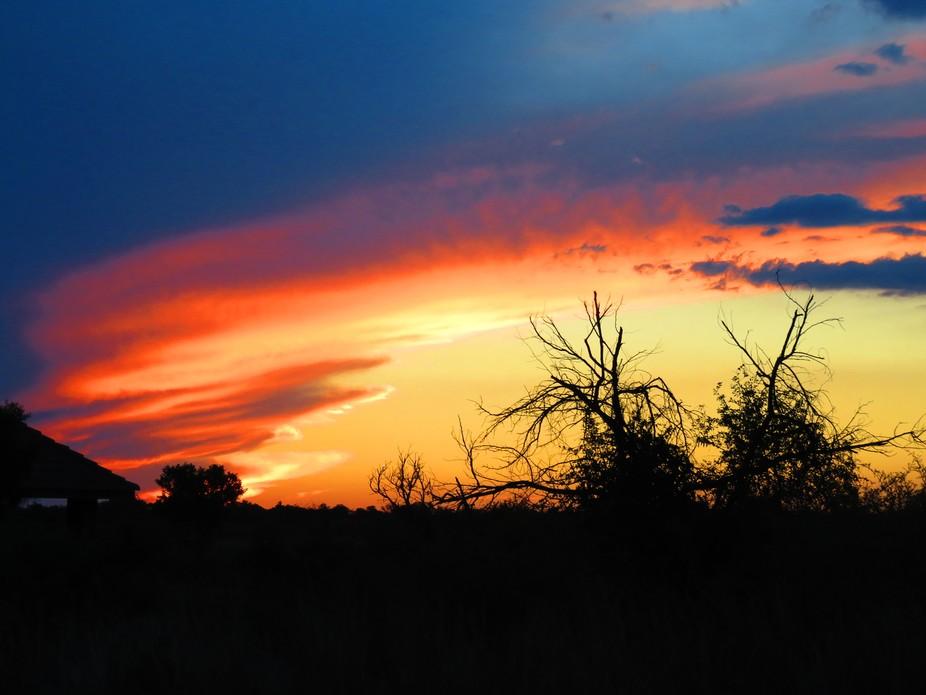 Nature last light show