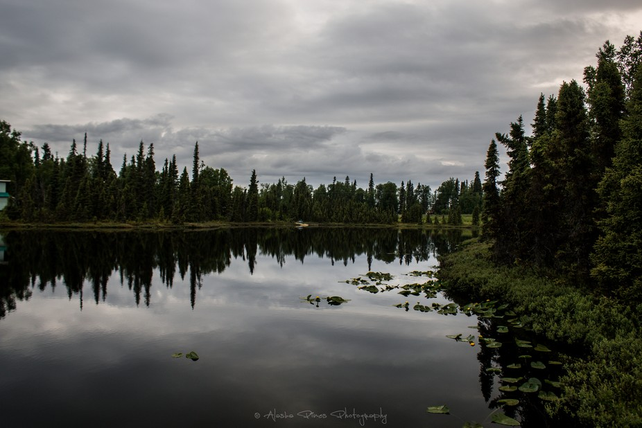 A lovely little pond close to Ninilchick, Alaska
