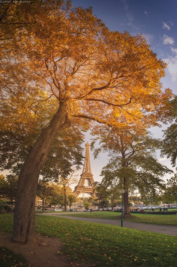 Paris by DanielKordan - Paris Photo Contest