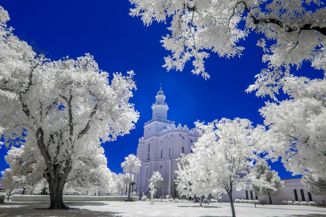 The Saint George, Utah LDS Temple photographed using a Sony A6000 full spectrum converted camera with a Lifepixel Super Blue infrared filter. Processed to bring out white foliage.