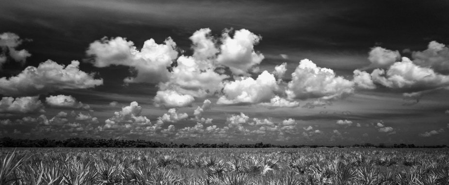 Infrared picture of the Kissimmee Prairie Preserve.