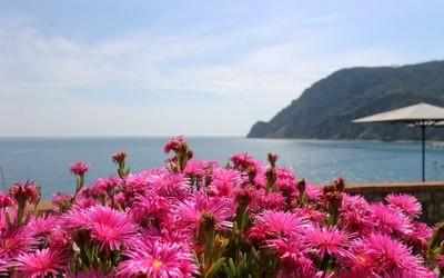 Spring in Cinque Terre