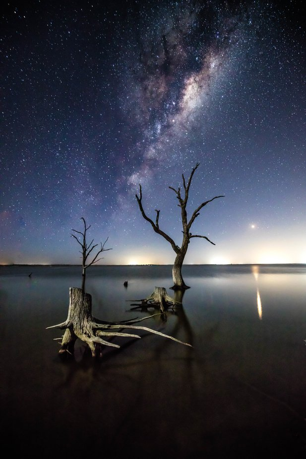 0E2A2100-2 by danielburton - Image Of The Month Photo Contest Vol 35
