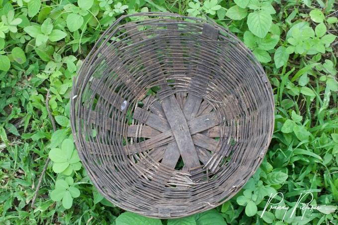An empty basket !