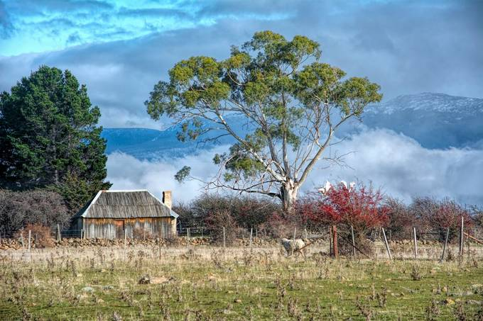 Old settlers shack still standing up to the elements. Morning fog rising up from the valley below.
