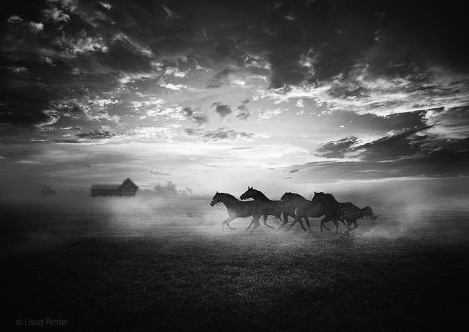 race by LissetPerrier - Our World In Black And White Photo Contest