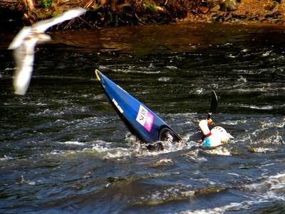Kinds of Water sports. Kayak and Seagull. Losevskiy threshold, Losevo (formerly Kiviniemi). Leningrad region, St. Petersburg. 20x zoom. Photo 1.