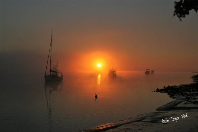A foggy morning changes the whole feel of a sunrise.