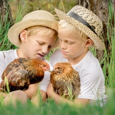 These two boy are brothers and they own chickens whom are also brother.  Double Brothers